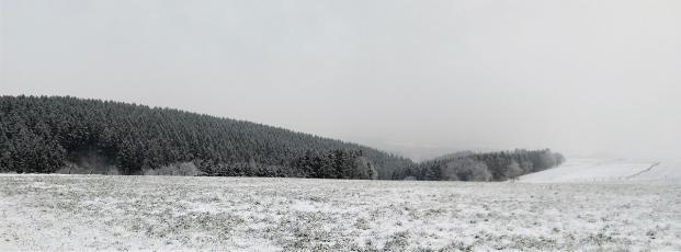 Blick in Richtung Hürtgenwald vom Hochplateau bei Vossenack aus