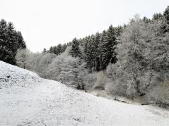 Beim Abstieg hinunter zum Bosselbach