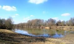 DIe Roos - ein ehemaliger Rheinarm, der jetzt nur noch bei Hochwasser mit dem Rhein verbunden ist