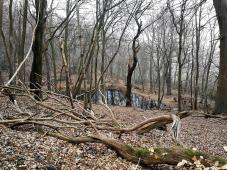 Blick hinunter auf einen der zahlreichen Waldseen