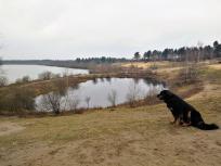 Blick über den Rand des Reindersmeers