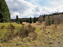 Blick ins obere Krockesbachtal