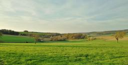 Offene Feldflächen unterhalb des Heidkopfs