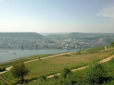 Blick vom Niederwalddenkmal hinunter ins Rheintal nach Bingen