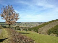 Beim Abstieg zum Weiler Kradenhövel
