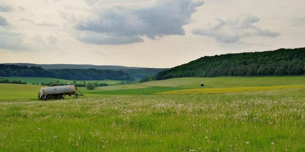 Blick ins Tal zwischen dem Asseler Wald und Wrexen