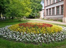 Blumenanlage im Lindenbuhl