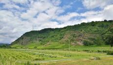 Weinberge östlich von Unkel der Flanke des Rheintals