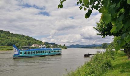 """Die """"Nemo"""" der KD-Schiffiahrtsgesellschaft auf dem Rückweg von Koblenz nach Bonn legt an"""