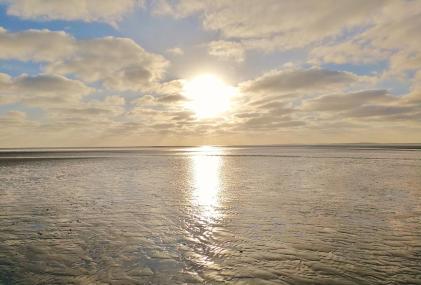 Die Sonne im Gegenlicht über dem Watt