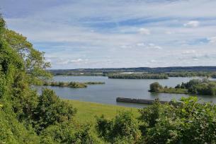 Wasserlandschaft an der Maas