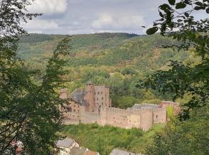 Blick aus dem Wald zum Schloss Hamm