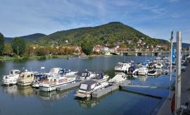 Blick vom Yachthafen zum Heiligengeistberg auf der Nordseite des Nackars