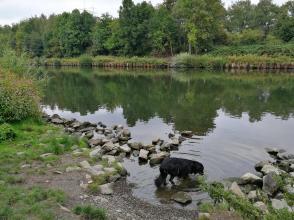 Doxi testet die Wasserqualität des Rhein-Herne-Kanals