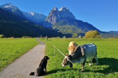 Wir laufen auf den Großem Waxerstein und die Schönangerspitze zu