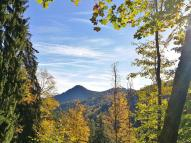 Nur selben können wir bei Aufstieg durch den Wald in die Ferne blicken