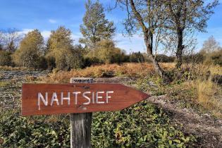 Im Nahtsief kann man sich nur noch auf Holzstegen durch die feuchte Vennlandschaft bewegen