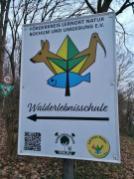 Im NSG Berghofer Holz