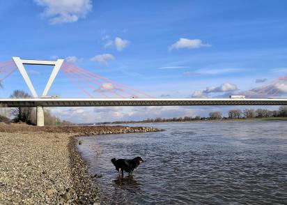 Doxi testet die Wasserqualität des Rheins
