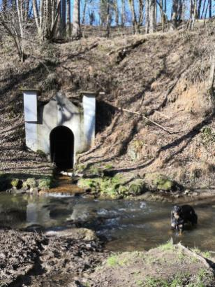 Hier fließt das Wasser direkt aus einem ehemaligen Stollen in den Bach
