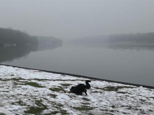 Doxi stürzt sich in eine der letzten verbliebenen Schneeflächen