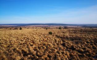 Blick nach Osten in Richtung der heutigen Deutschen Grenze