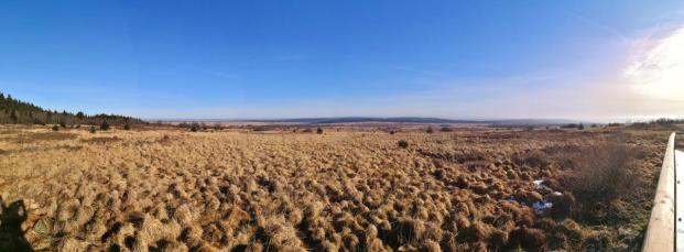 Panoramablick von der Besucherplattform ins Venn
