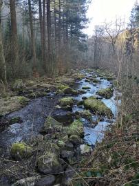 Steine von den umliegenden Hängen im Fluss