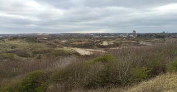 Blick in den Ostduinpark