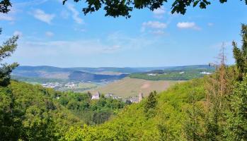 Blick zur Burg Landshut und zur Mosel