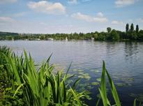 Blick über den See nach Essen-Heisingen