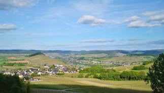 Blick oberhalb von Monzel in das Moseltal mit Bernkastel-Kues am Horizont