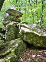 Das Naturdenkmal Wildenstein