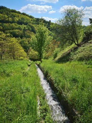 Kanalsiert strömt das Wasser aus den Höhenlagen zwischen den Weinbergen zu Tal