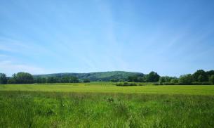 Sanfte Hügel durchziehen die Landschaft