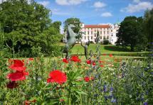 Blick aus dem Schlosspark auf das Schloss Celle