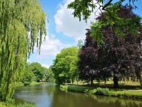 Wasserflächen im Sclosspark