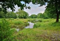 Naturschutzgebiet hinter dem Womo-Stellplatz