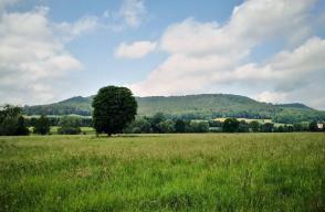 Blick vom Tal der Emmer zum Höhenzug hinter dem Schloss