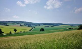 Landschaft hinter Amelgatzen. Blick in Richtung des Schellenbergs