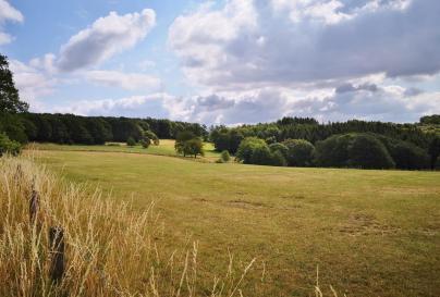 Blick aus dem Naturschutzgebiet Wupperschleife Bilstein-Daipenbeke