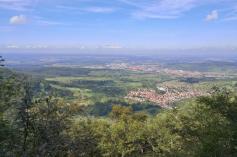 Blick vom Albrand am Wolfsfelsen in nördlicher Richtung hinunter nach Metzingen
