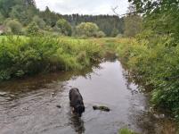 Doxi testet die Wasserqualität der Fehla
