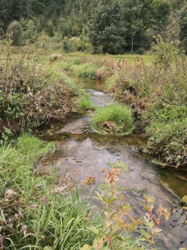 Die Fehla schlägt immer wieder Haken auf ihrem Weg durch das Tal