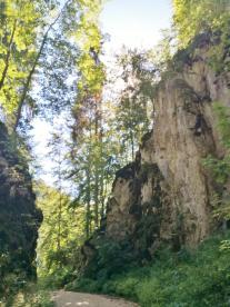 Felsdurchbruch am Eingang in den Sigmaringer Stadtwald