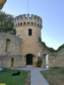 Die beiden nach Wiederaufbau im 19. Jahrhundert erhaltenen Türme der Honburg
