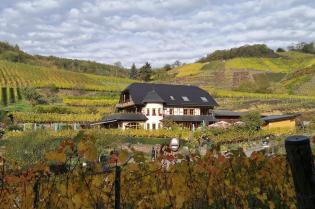 Beliebtes Lokal in den Weinbergen oberhalb von Mayschoß