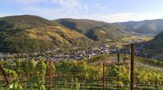 Blick zum Krausberg und ins Ahrtal beim Abstieg nach Dernau