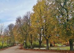 Herbst im Kurpark von Bad Meinberg