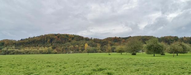 Blick über die Wiesen im Ruhrtal zur den Ruhrhöhen